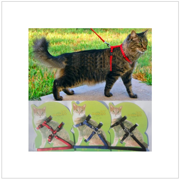Postroj pro kočky / nz9-00003