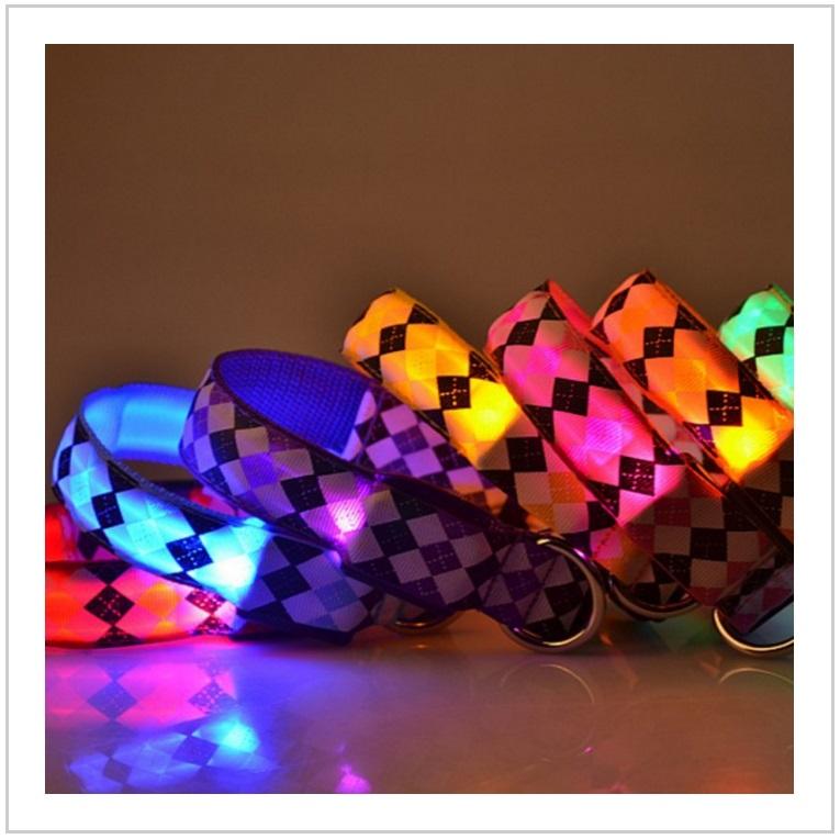 Svítící obojek pro psy / dnk-13-00061