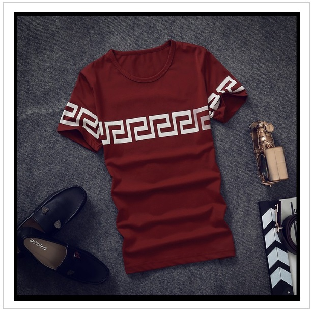 Pánské tričko / tnk-13-01822d
