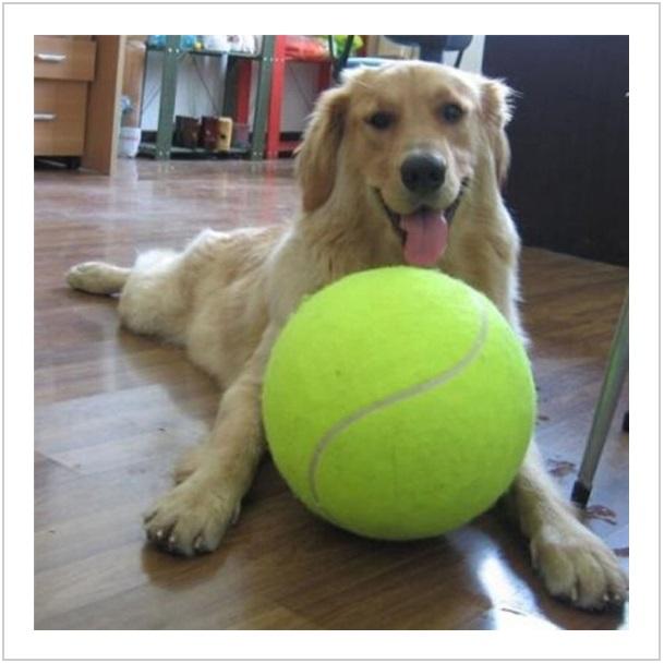 XXL tenisový míček pro psy / dnk-13-00968