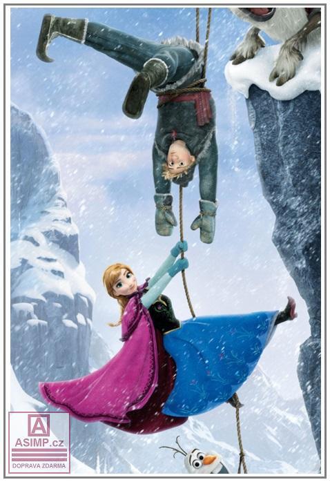 Plátěný plakát Ledové království (60 x 90 cm) / d13-00001c