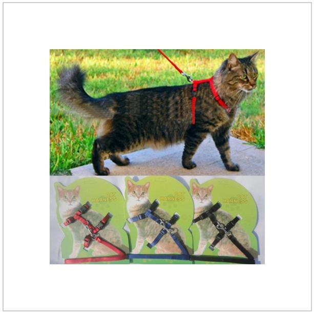 Postroj pro kočky