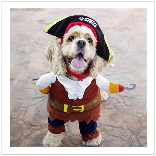 Pirátský obleček pro psy (M)