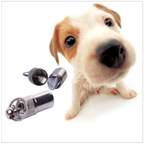 Identifikační patrona pro psy