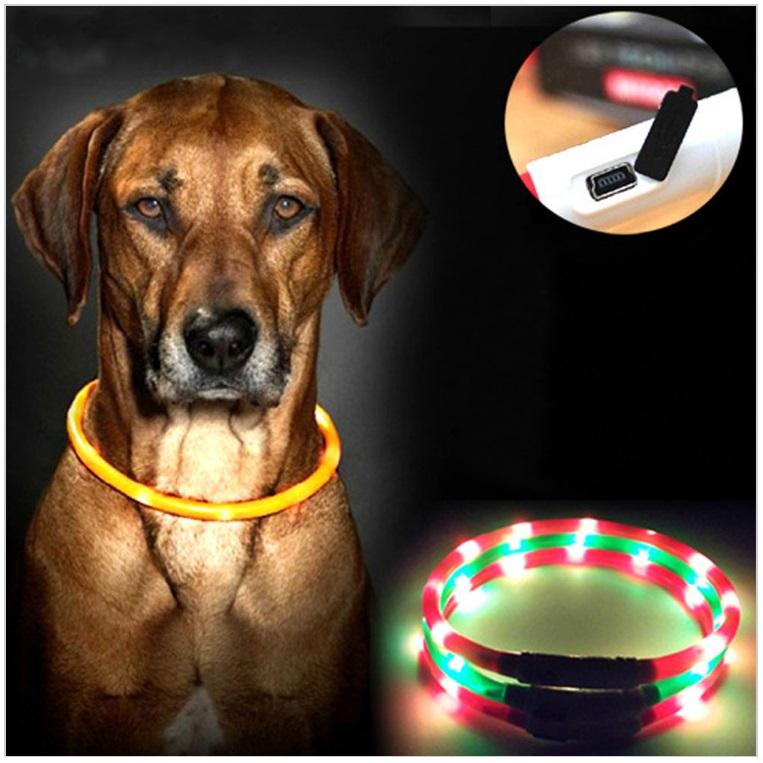 Svítící obojek pro psy / dnk-13-01334